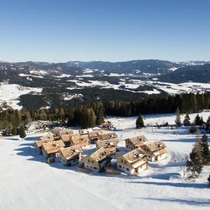 酒店图片: Chaletdorf-Fanningberg, Weisspriach