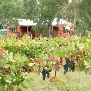 Fotos de l'hotel: Fergies Hill Spa Cottage @ Granite Ridge Wines, Ballandean