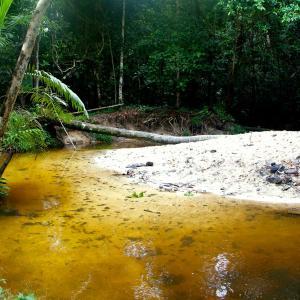 Hotel Pictures: Reserva Natural Palmari, Paumari