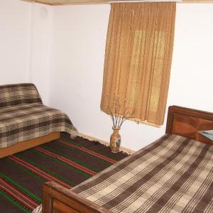 Fotos de l'hotel: Guest House Gnezdoto, Dolni Maryan