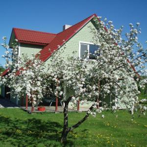 Hotel Pictures: Välja Tourism Farm, Hiievälja
