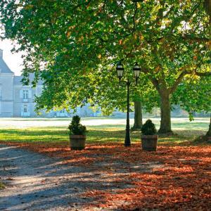 Hotel Pictures: Chateau De Cop Choux, Mouzeil