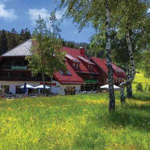Hotel Pictures: Pension Mühlencafé, Breitnau