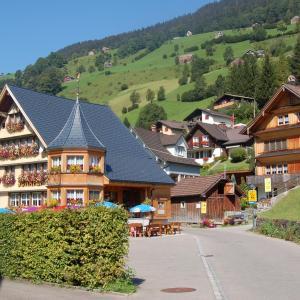 Hotel Pictures: Gasthaus Schäfli, Alt Sankt Johann