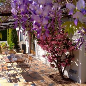 Hotel Pictures: Le Nouvel, Portes-lès-Valence