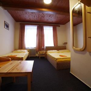 Hotel Pictures: Penzion Sally, Albrechtice v Jizerských horách