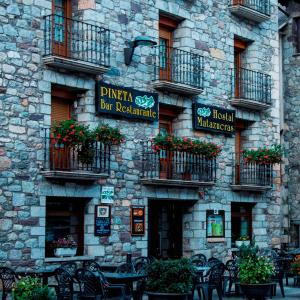 Hotel Pictures: Hostal Matazueras, Bielsa