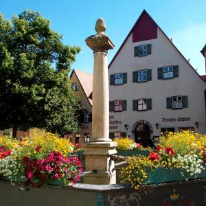 Hotelbilleder: Hotel Haus Appelberg, Dinkelsbühl