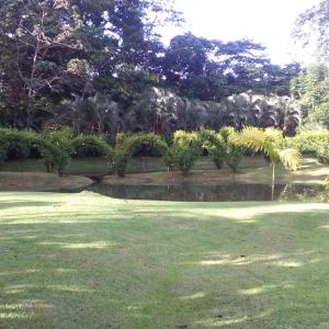 Hotel Pictures: Rincon Verde, Bijagua