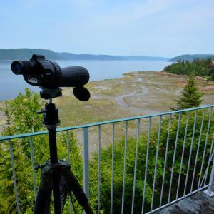 Hotel Pictures: Auberge de la Rivière Saguenay, La Baie