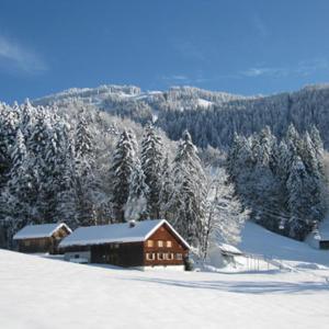 Hotelbilleder: Hütte am Hirschberg, Bizau