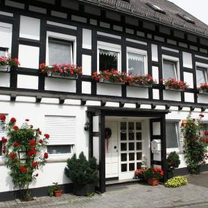 Hotel Pictures: Ferienwohnung Willingen, Assinghausen