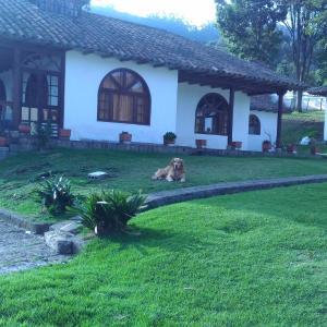 Hotel Pictures: La Quinta Del Abuelo, Facatativa