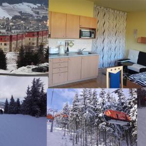 Hotel Pictures: Apartmán Alfa, Loučná pod Klínovcem