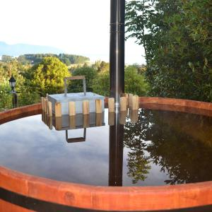 Фотографии отеля: Cabañas Lenca Carretera Austral, Lenca