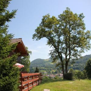 Hotel Pictures: Les Chalets des Ayes II, Le Thillot