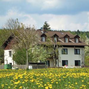 Hotel Pictures: Apartment Fichtelgebirge II, Kirchenlamitz