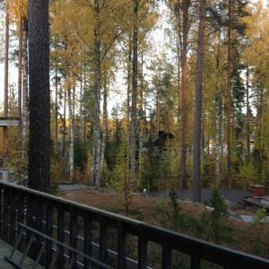 Hotel Pictures: Kaaro 2 Cottage, Hillosensalmi
