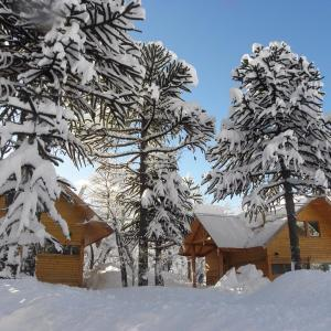 Фотографии отеля: Raices del Colorado by Sledchile, Malalcahuello