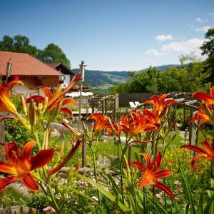 Hotel Pictures: Hotel Waldschloessl, Neukirchen beim Heiligen Blut