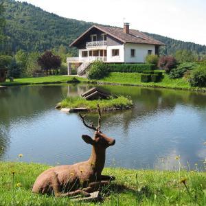 Hotel Pictures: Villa Les Chevreuils, Saint-Maurice-sur-Moselle