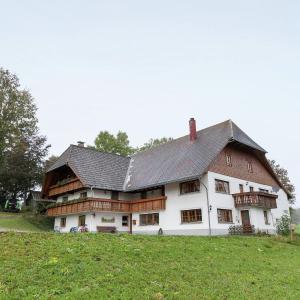 Hotel Pictures: Apartment Ladstadt 1, Furtwangen