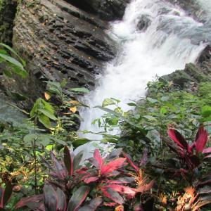 Hotellbilder: Cabinas y Restaurante Tilapias La Cascada, Ojochal