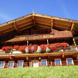 Hotel Pictures: Moserhütte, Thierbach