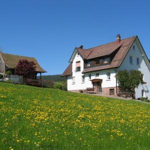 Hotel Pictures: Apartment Tonbach 2, Baiersbronn