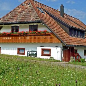 Hotelbilleder: Schwarzwald, Rickenbach