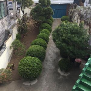 Zdjęcia hotelu: 95 pyeong taek 3-ro, Pyeongtaek