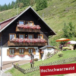 Hotelbilleder: Gästehaus Wild, Menzenschwand