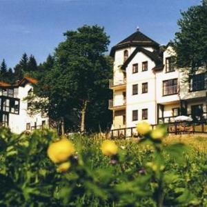 Hotel Pictures: Gastinger Hotel-Restaurant, Schmiedefeld am Rennsteig