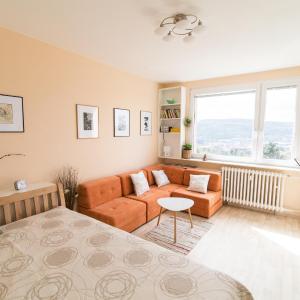 Hotel Pictures: Apartman Labe, Ústí nad Labem