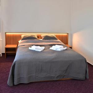 Hotel Pictures: Hotel Sonata, Hradec nad Moravici