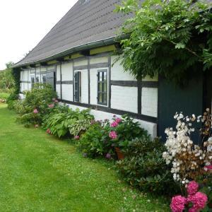 Hotelbilleder: Chestnut Cottage, Rantzau