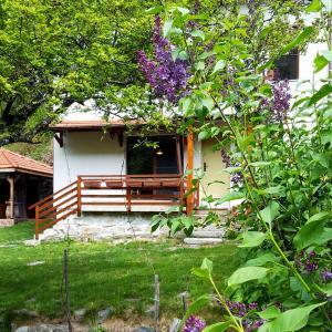 酒店图片: Kirilova House, Pastra
