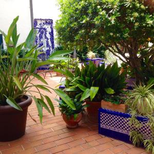 Hotel Pictures: Hotel Sant Jaume, Alcudia
