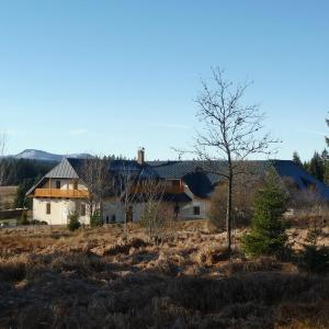 Hotel Pictures: Pension Hajenka, Modrava