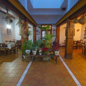 Hotel Pictures: Hotel El Tabanco, El Bosque