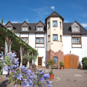 Hotel Pictures: Landhotel Hopp Garni, Heßheim
