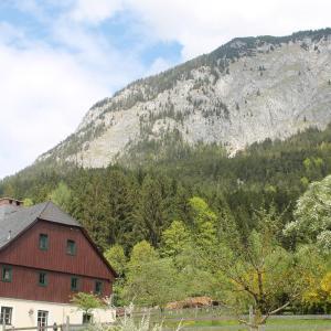 Hotel Pictures: Ferienwohnung Salza, Sankt Martin am Grimming
