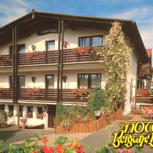 Hotelbilleder: Schmankerl Hotel Bauer, Tröstau
