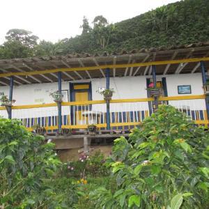 Hotel Pictures: Hostal Buena vista, Neira