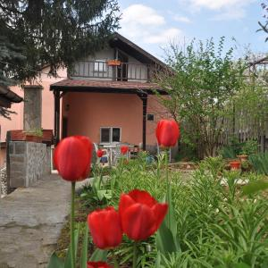 Hotellbilder: Holiday Home Vilata, Kŭrdzhali