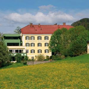 酒店图片: Hotel Gasthof Esterhammer, 布赫拜延巴赫