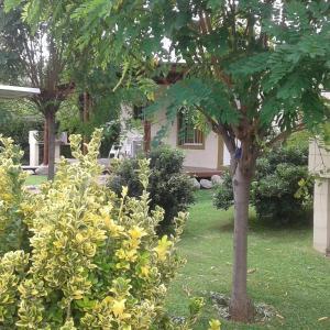 Zdjęcia hotelu: Cabañas Cumelen, Potrero de los Funes