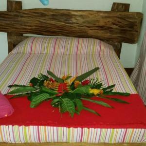 Hotelfoto's: Jungle Experience, Puerto Viejo