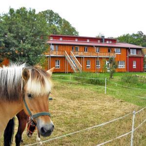 Hotel Pictures: Biohof Medewege, Schwerin