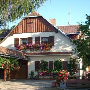 Hotel Pictures: Pension Ivanka, Jestrabi V Krkonosich